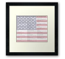American Declaration of the Rights and Duties of Man Light Background Framed Print