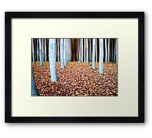 Down the crack Framed Print