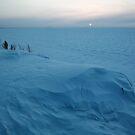 Winter Sunset by Olga Zvereva