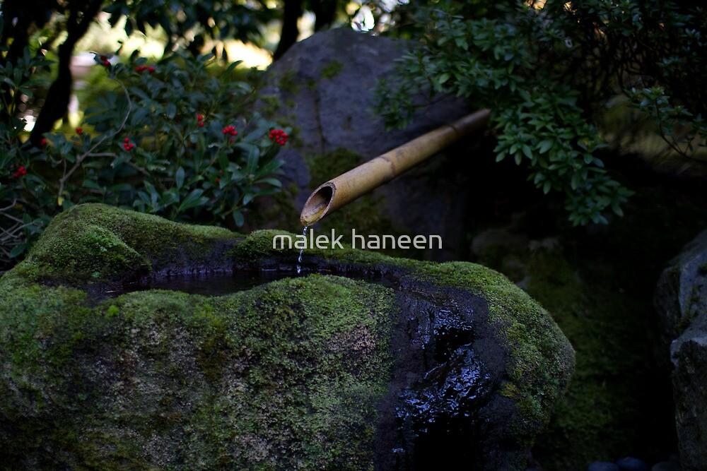 pool of love by malek haneen