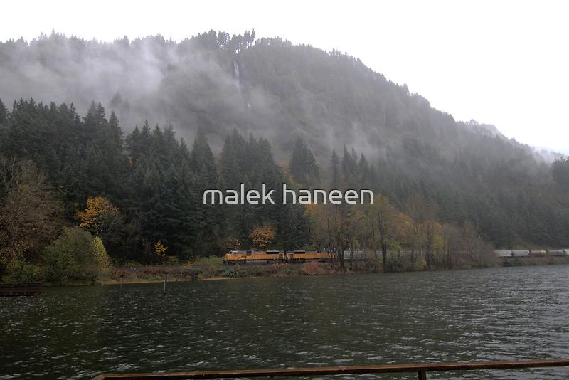 Train in the wind by malek haneen