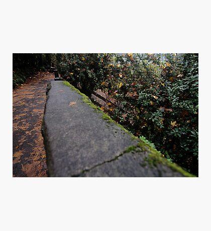 The way Photographic Print