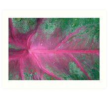 Kirsten Smith's 'artist's palette' Art Print