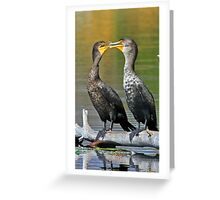 Kissing cormorants! Greeting Card