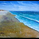 shelly beach by Wayne Dowsent