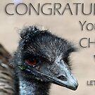 Let animals stay free challenge banner by Caroline Hannessen