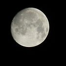 Full Moon - View Larger by Navigator