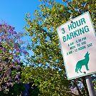 3 Hour Barking by { wetnosefotos.com  }