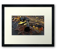 Neglected Nikon  ... (Be Back Soon!!)  Framed Print