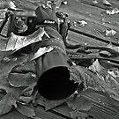 Neglected Nikon 2 .....(Be Back Soon!)  by heatherfriedman