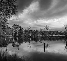 Banyule Flats 2 by Christine  Wilson Photography