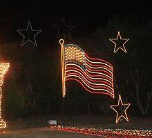 A patriotic show. by Larry R McCrea