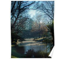Winter morning in Hagley Park Poster