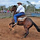 Australian Cowboy by Janette Rodgers