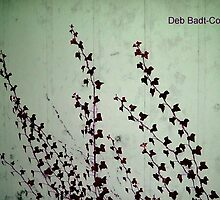 """Vining"" For You by Deb  Badt-Covell"