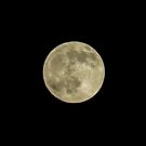 Full Moon by George Davidson