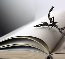 Open book with wire by jrlees1