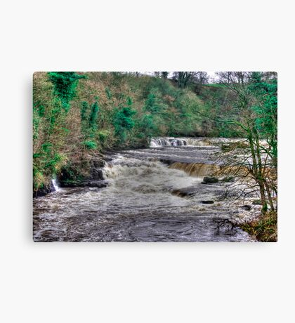 Aysgarth Falls  - Yorkshire Dales Canvas Print