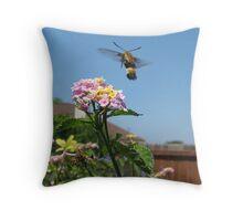 The Butterfly Hawk Moth Throw Pillow