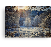Scannadio Canvas Print