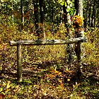 The Old Hitching Post by Sharon Woerner