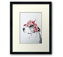 Dog crown Framed Print