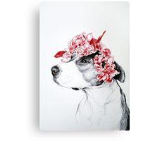 Dog crown Canvas Print