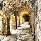 Pathway by Brian Beckett