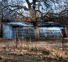 Barn - Montague, Texas by jphall