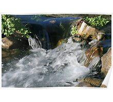 The River Cesse near Bize, Aude  France Poster