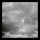 Raindrops on Glass by Erin  Sadler