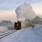 Steaming in a Winter Wonderland by Gerry  Balding
