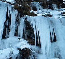 Ice Daggers by Neil Crittenden