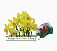 Happy St. David's Day by missmoneypenny