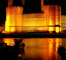 Caernarfon Castle by Terry Greenwood