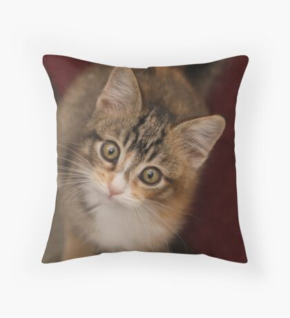 Just a nibble Throw Pillow
