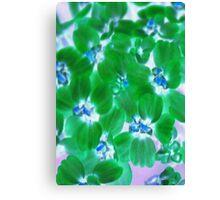 Verdant Green Blossoms Canvas Print