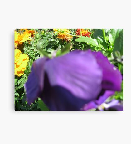 Looking down the mouth of a flower Canvas Print