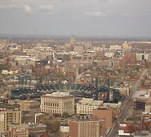 Comerica Park 40th floor view by Rencen