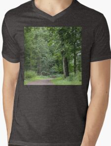 Lush Green Forest Mens V-Neck T-Shirt