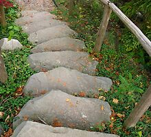 Stone Stairway by Rencen