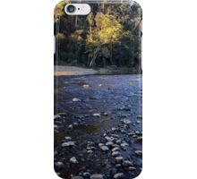 Warrawee Forest Reserve iPhone Case/Skin