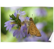 Skipper on Purple Poster