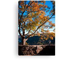 Beckoning Sunset Canvas Print