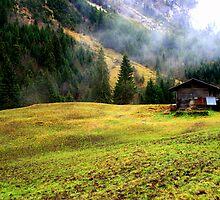 Suisse #2 by Mariya Manzhos