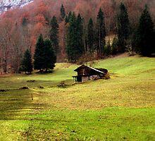 Suisse #4 by Mariya Manzhos