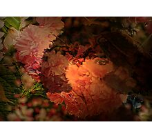 Simple Gifts Photographic Print