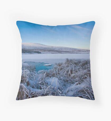 frosty Throw Pillow