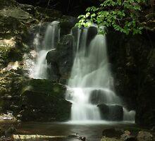 Waterfall - Wagon Wheel Ranch Road by stewartcher