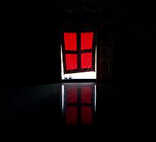 red door. world peace stupa, northern india by tim buckley   bodhiimages